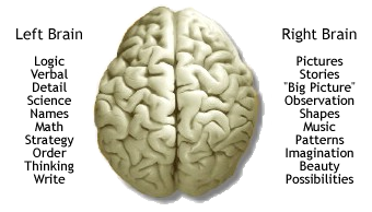 left-brain | Insights